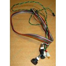 Светодиоды в Кемерово, кнопки и динамик (с кабелями и разъемами) для корпуса Chieftec (Кемерово)